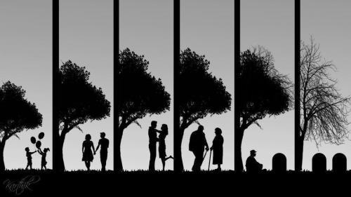A vida como ela é...