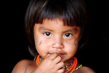 O olhar indigena