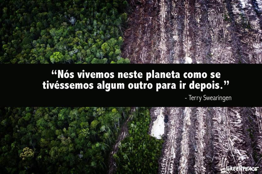 Amazônia o desmatamento